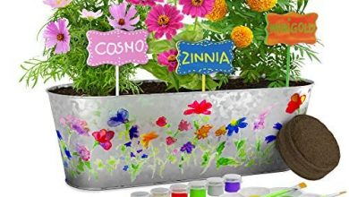 Photo of Paint & Plant Flower Growing Kit – Kids Gardening Science Gifts for Girls and Boys Ages 4 5 6 7 8 9 10 – STEM Arts & Crafts Project Activity – Grow Your Own Cosmos, Zinnia & Marigold Flowers