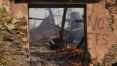 Photo of Algeria blames groups it links to Morocco, Israel for wildfires | Algeria News