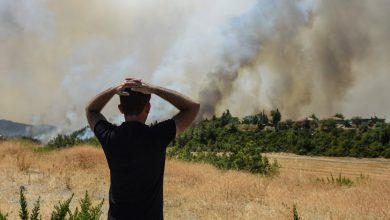 Photo of Burning forests and burning coal: Turkey's climate conundrum | Climate Change