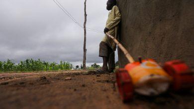 Photo of Nigerian gunmen free dozens of kidnapped children | Child Rights News